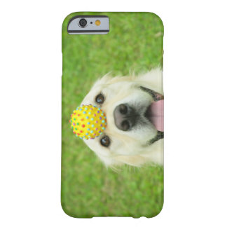 Portrait of a dog with a ball on its nose barely there iPhone 6 case