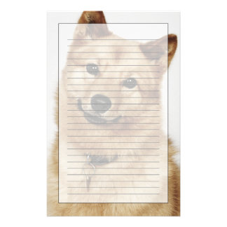 Portrait of a Finnish Spitz dog smiling Stationery Design