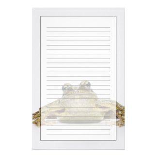 Portrait of a frog in a white studio stationery