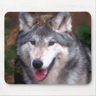 Portrait of a gray wolf mouse mat