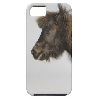 portrait of a horse iPhone 5 covers
