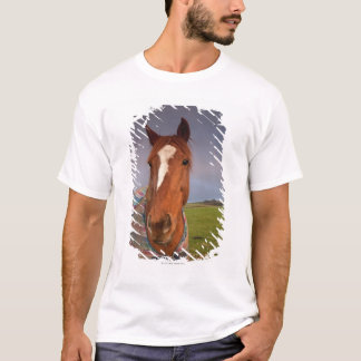 Portrait Of A Horse With A Rainbow In The Sky T-Shirt