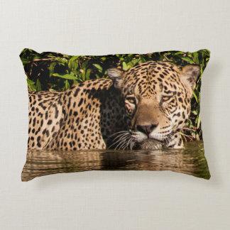 Portrait of a Jaguar Swimming Decorative Cushion