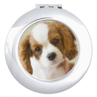 Portrait of a King Charles Spaniel puppy Travel Mirrors