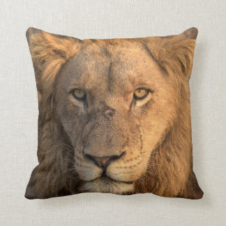 Portrait of a Male Lion Cushion