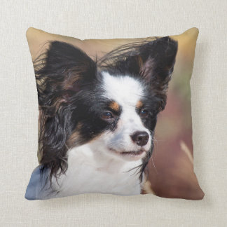 Portrait Of A Papillon Sitting In The Wind Cushion
