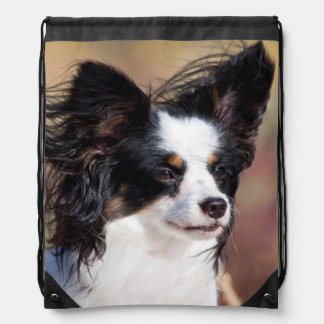 Portrait Of A Papillon Sitting In The Wind Drawstring Bag