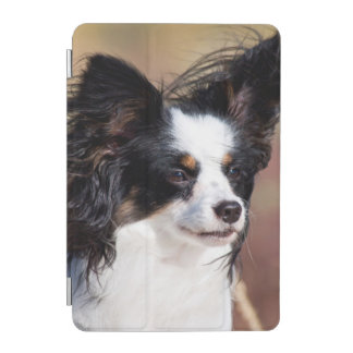 Portrait Of A Papillon Sitting In The Wind iPad Mini Cover