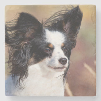 Portrait Of A Papillon Sitting In The Wind Stone Coaster