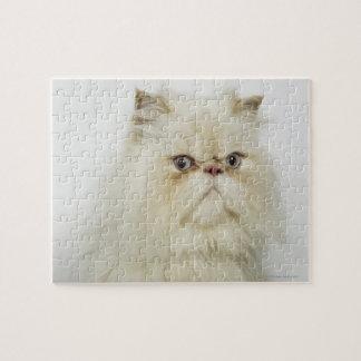 Portrait of a Persian cat Puzzle