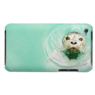 Portrait of a seal in water barely there iPod cases