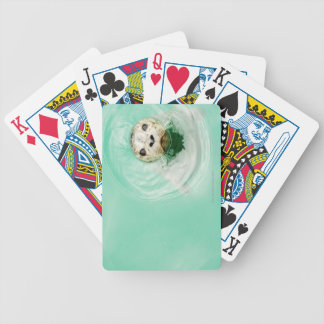Portrait of a seal in water bicycle playing cards