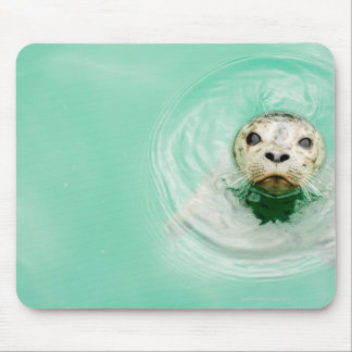 Portrait of a seal in water mouse mat