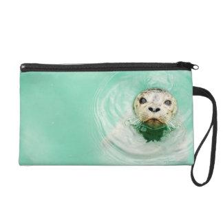 Portrait of a seal in water wristlet