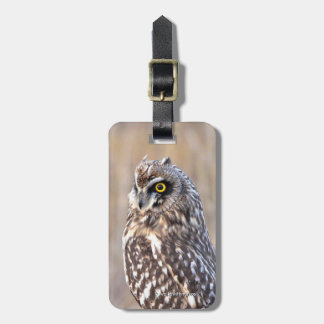 Portrait of a Short-Eared Owl Luggage Tag