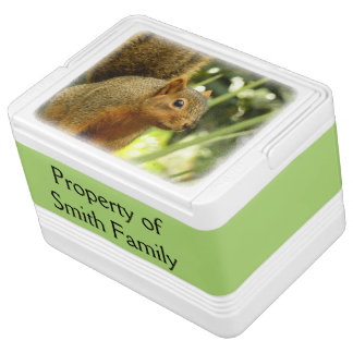 Portrait of a Squirrel Nature Animal Photography Igloo Cooler