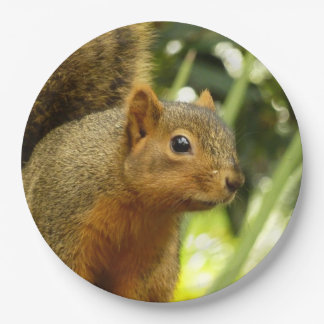 Portrait of a Squirrel Nature Animal Photography Paper Plate