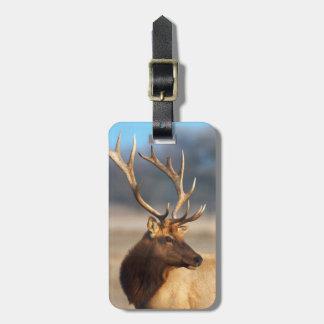 Portrait of a stunning bull elk luggage tag