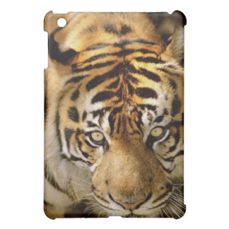 Portrait of a tiger case for the iPad mini