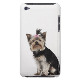 Portrait of a Yorkshire Terrier dog iPod Touch Case-Mate Case