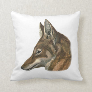 Portrait of Abyssinian Wolf Cushion