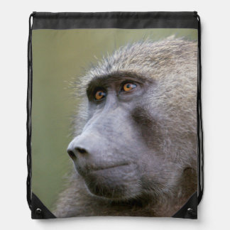 Portrait of adult Olive baboon (Papio anubis) Drawstring Bag