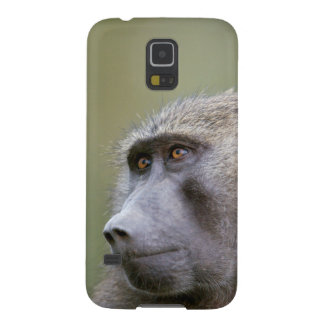 Portrait of adult Olive baboon (Papio anubis) Galaxy S5 Covers