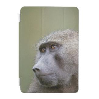 Portrait of adult Olive baboon (Papio anubis) iPad Mini Cover