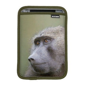 Portrait of adult Olive baboon (Papio anubis) iPad Mini Sleeve