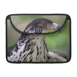 Portrait Of African Hawk Eagle Sleeves For MacBooks