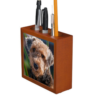 Portrait of an Airedale Terrier 1 Desk Organiser