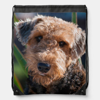 Portrait of an Airedale Terrier 1 Drawstring Bag