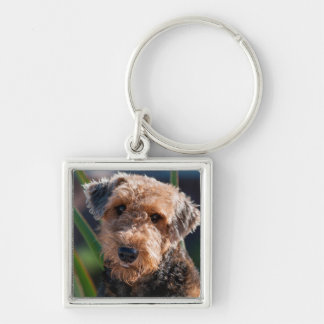 Portrait of an Airedale Terrier 1 Key Ring