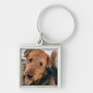Portrait of an Airedale Terrier 2 Silver-Colored Square Key Ring