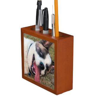 Portrait of an Akita Desk Organiser