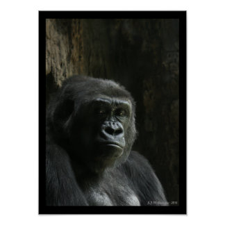 Portrait of an Ape Poster