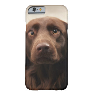 Portrait of an apprehensive young female barely there iPhone 6 case