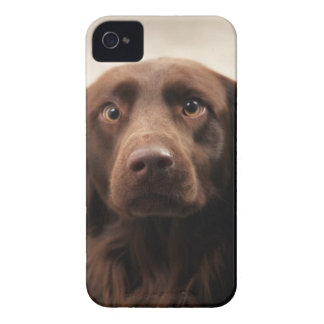 Portrait of an apprehensive young female iPhone 4 cases