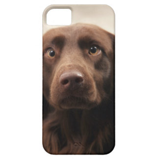 Portrait of an apprehensive young female iPhone 5 cover