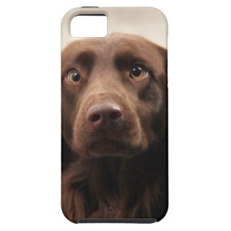 Portrait of an apprehensive young female iPhone 5 covers