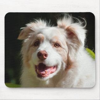 Portrait of an Australian Shepherd Mouse Mat