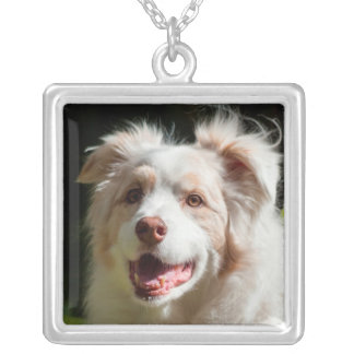 Portrait of an Australian Shepherd Silver Plated Necklace