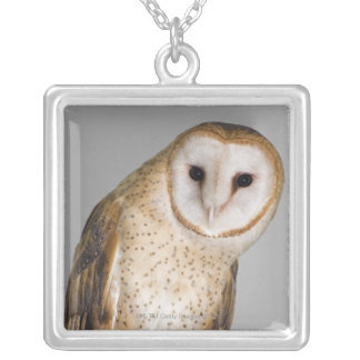 Portrait of barn owl (Tyto alba). Silver Plated Necklace