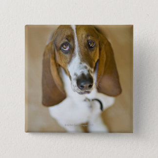Portrait of Bassett, Washington 15 Cm Square Badge