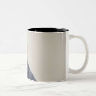 Portrait of Bichon Frise standing on table Two-Tone Coffee Mug