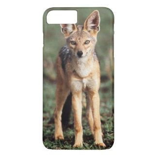 Portrait of Black-Backed Jackal iPhone 8 Plus/7 Plus Case