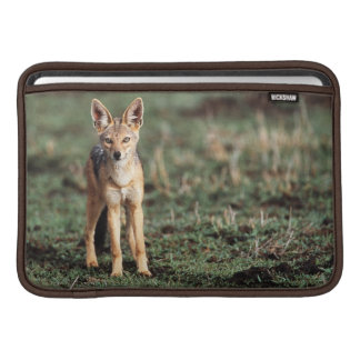 Portrait of Black-Backed Jackal Sleeve For MacBook Air