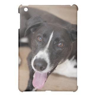 portrait of black dog iPad mini cover