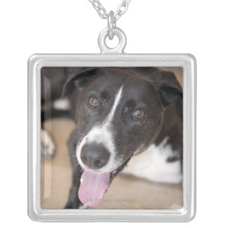 portrait of black dog silver plated necklace