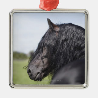 portrait of black horse with long mane christmas ornament